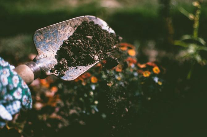 hand holding trowel full of soil