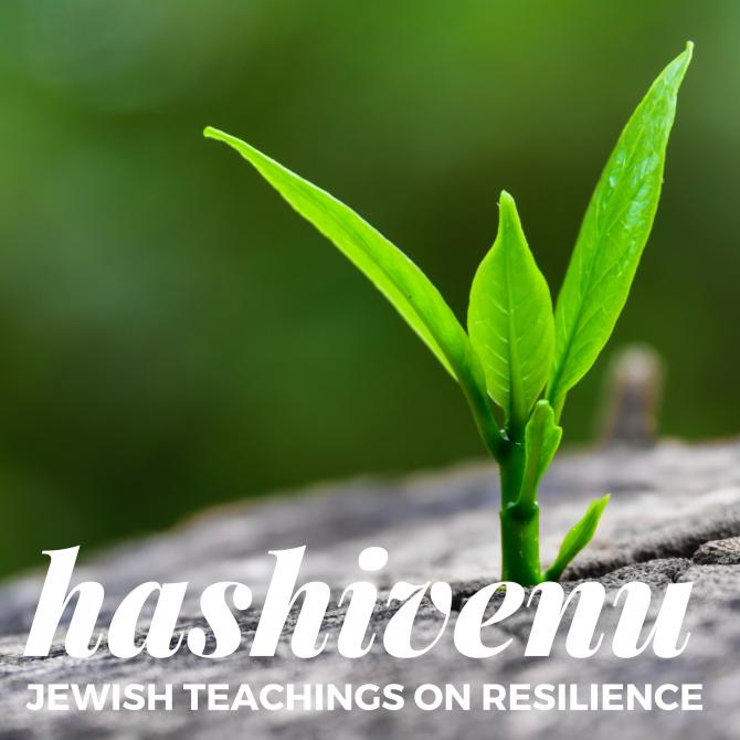 Hashivenu: Jewish Teachings on Resilience